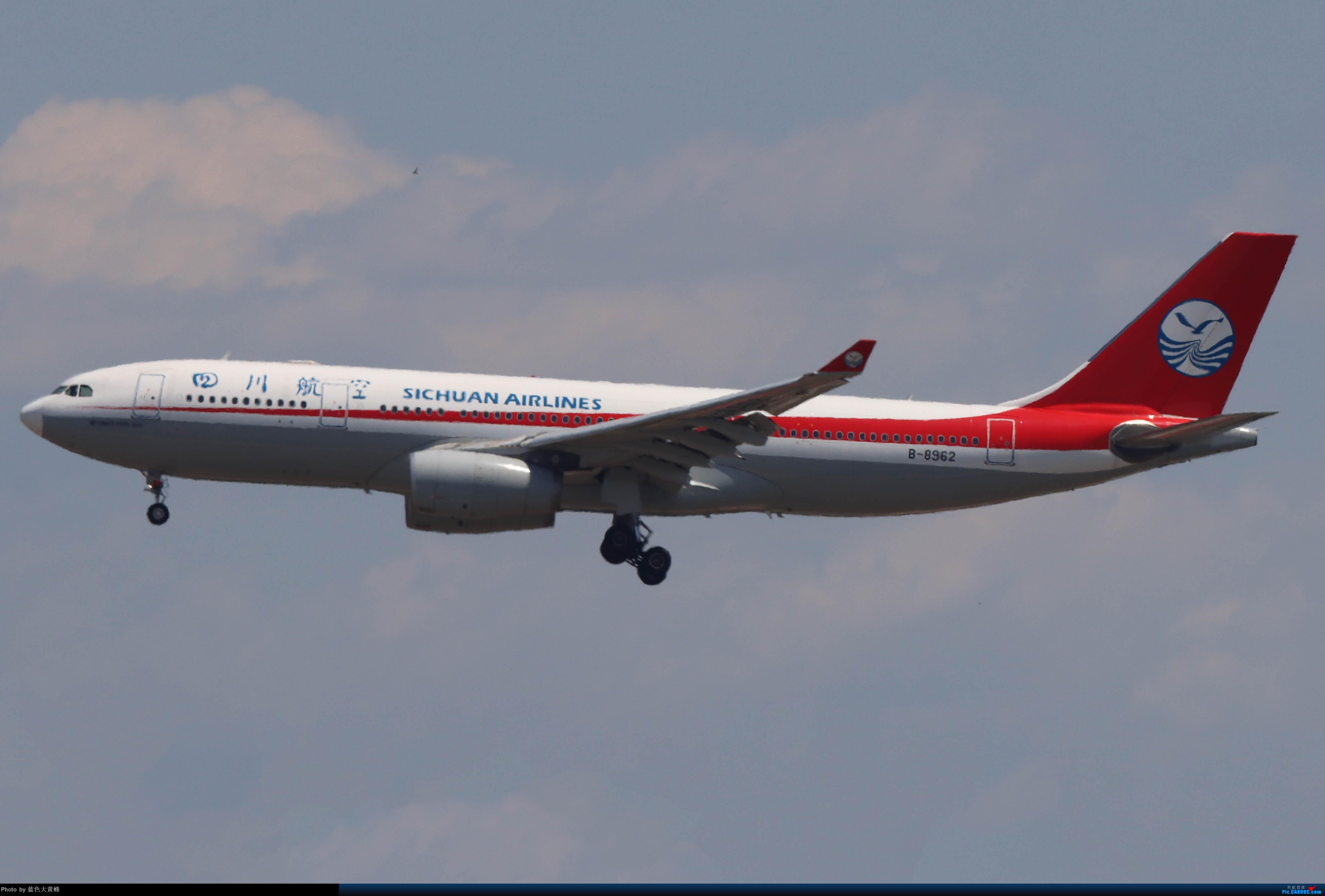 Re:[原创]PEK5.24随拍 AIRBUS A330-200 B-8962 中国北京首都国际机场