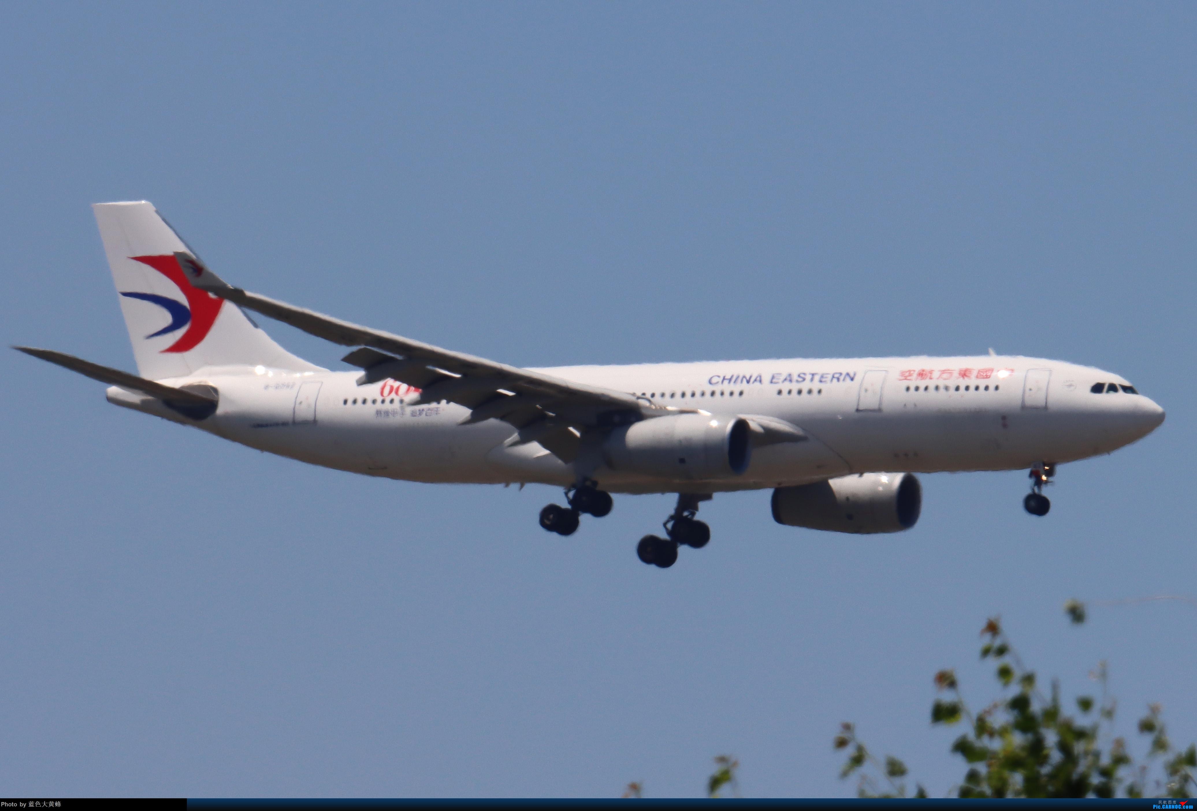 Re:[原创]PEK5.24随拍 AIRBUS A330-200 B-5942 中国北京首都国际机场