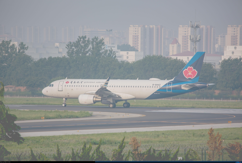 [原创]青岛航空B-8442中国第一架真正意义上的高速互联网飞机! AIRBUS A320-200 B-8442 中国青岛流亭国际机场
