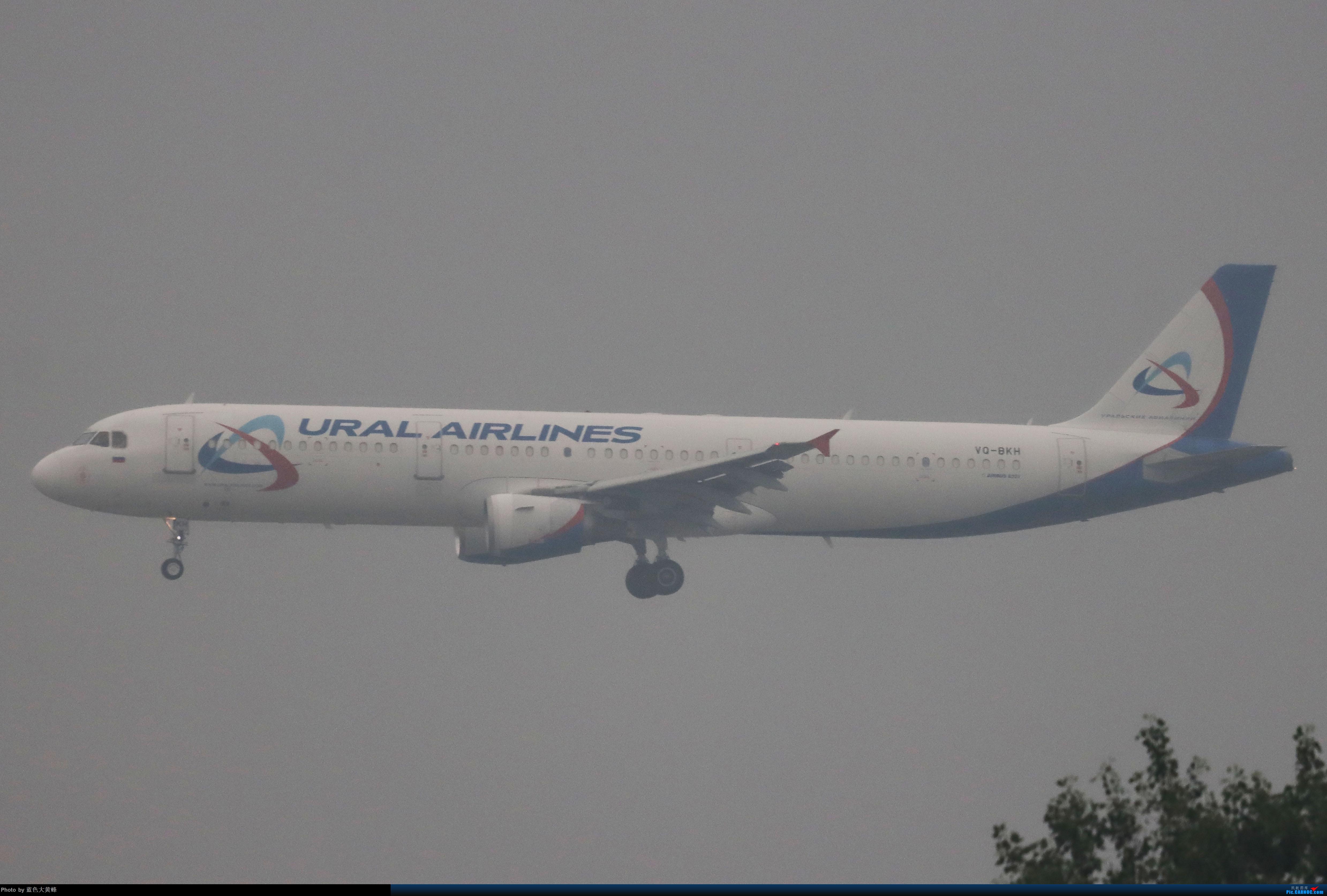 Re:[原创]烂天废片(持续更新) AIRBUS A321 VQ-BKH 中国北京首都国际机场