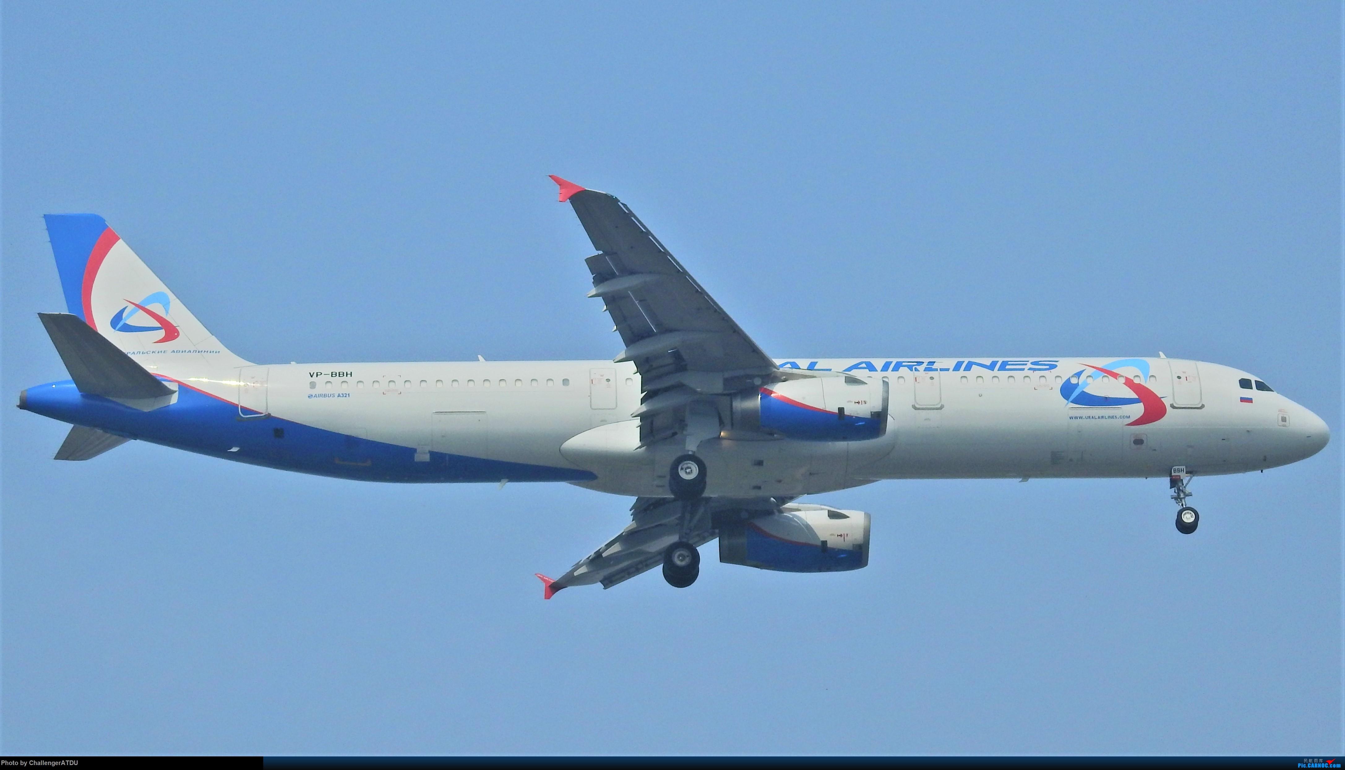 2020-5-30 萌新のPEK之旅 AIRBUS A321 VP-BBH 北京首都国际机场