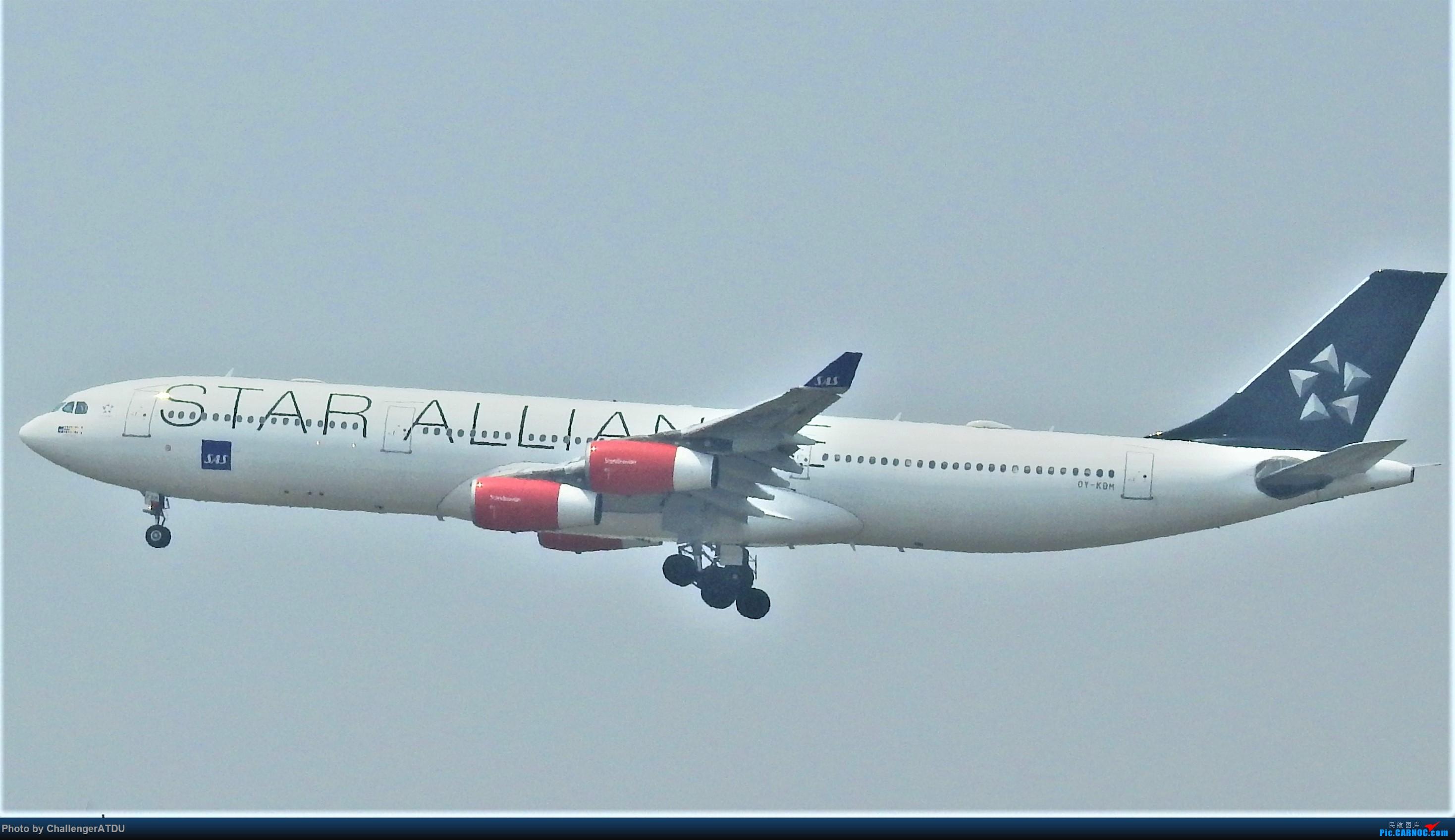 [原创]2020-5-30 萌新のPEK之旅 AIRBUS A340-300 OY-KBM 北京首都国际机场