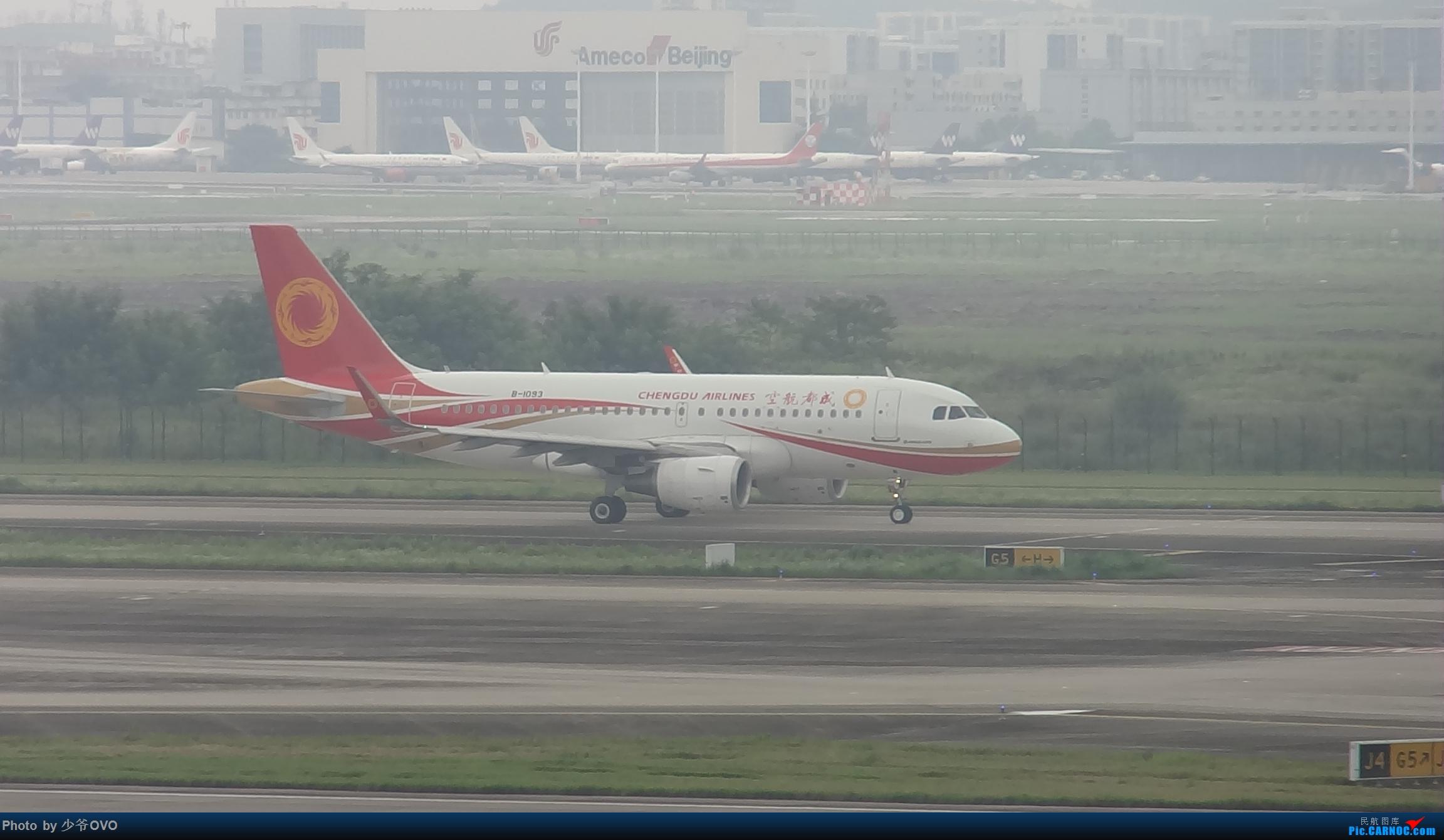 Re:[原创]CKG重庆江北机场拍机 ,中法建交50周年 AIRBUS A319-100 B-1093 中国重庆江北国际机场