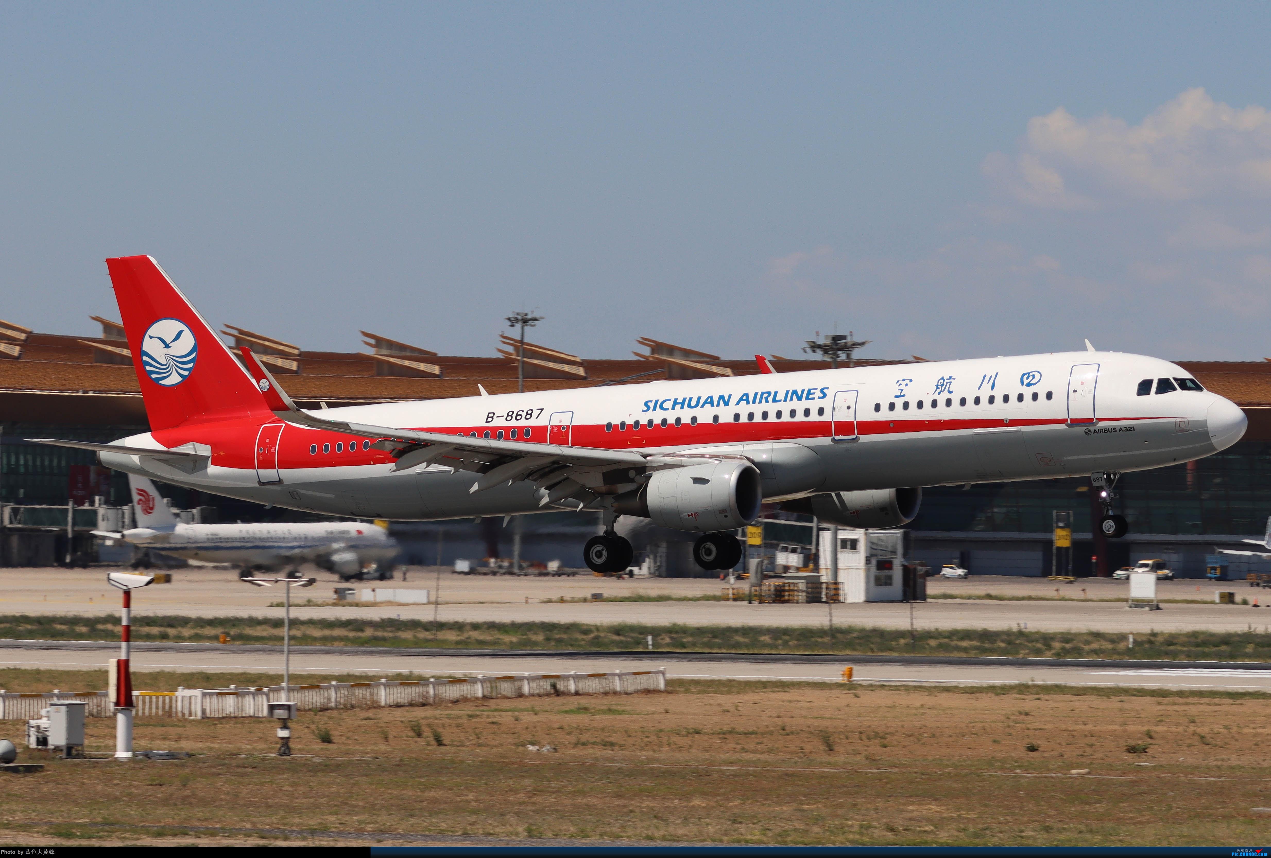 Re:[原创]PEK5.24随拍 AIRBUS A321-200 B-8687 中国北京首都国际机场