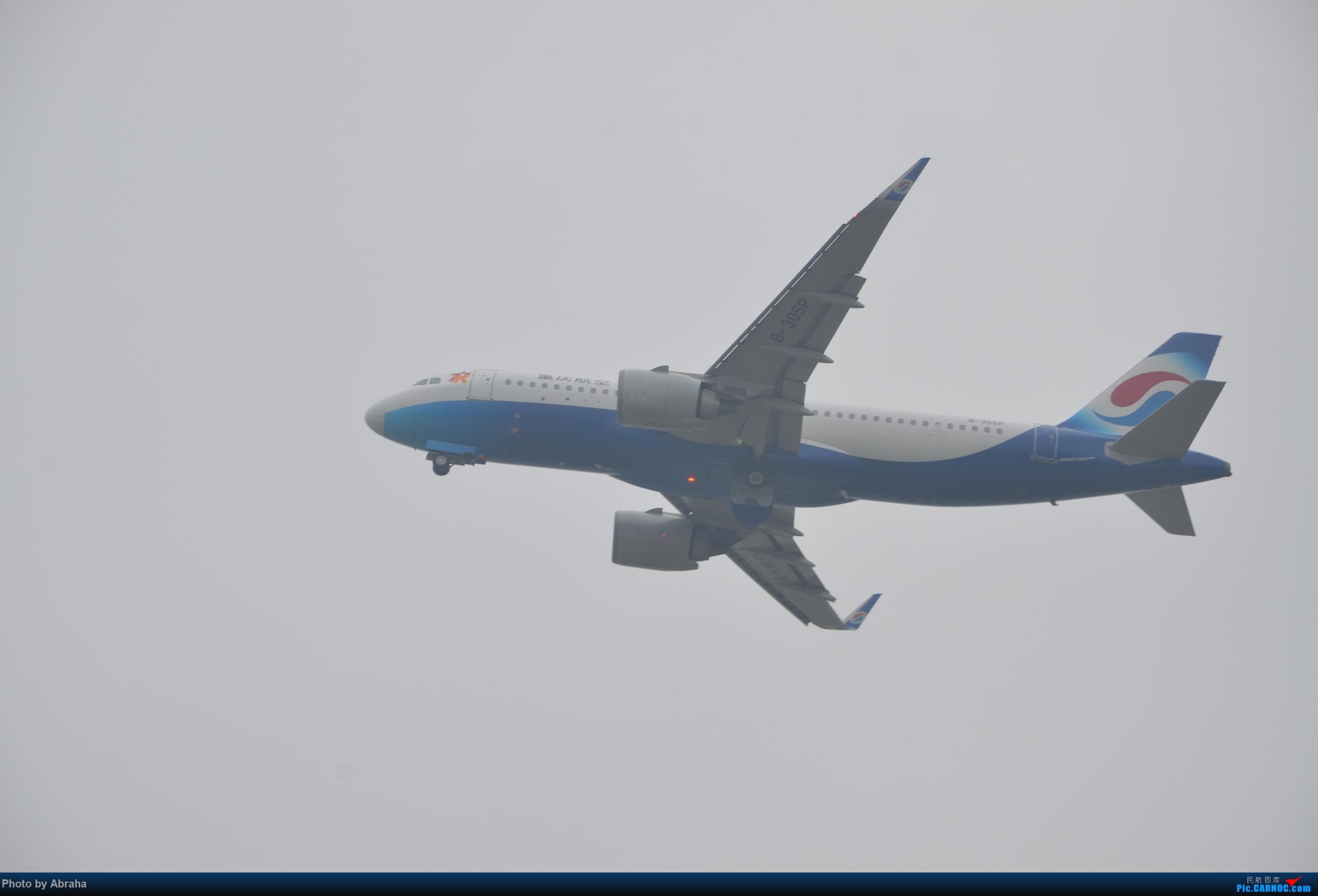 Re:[原创]国庆中的NKG AIRBUS A320NEO B-305P 南京