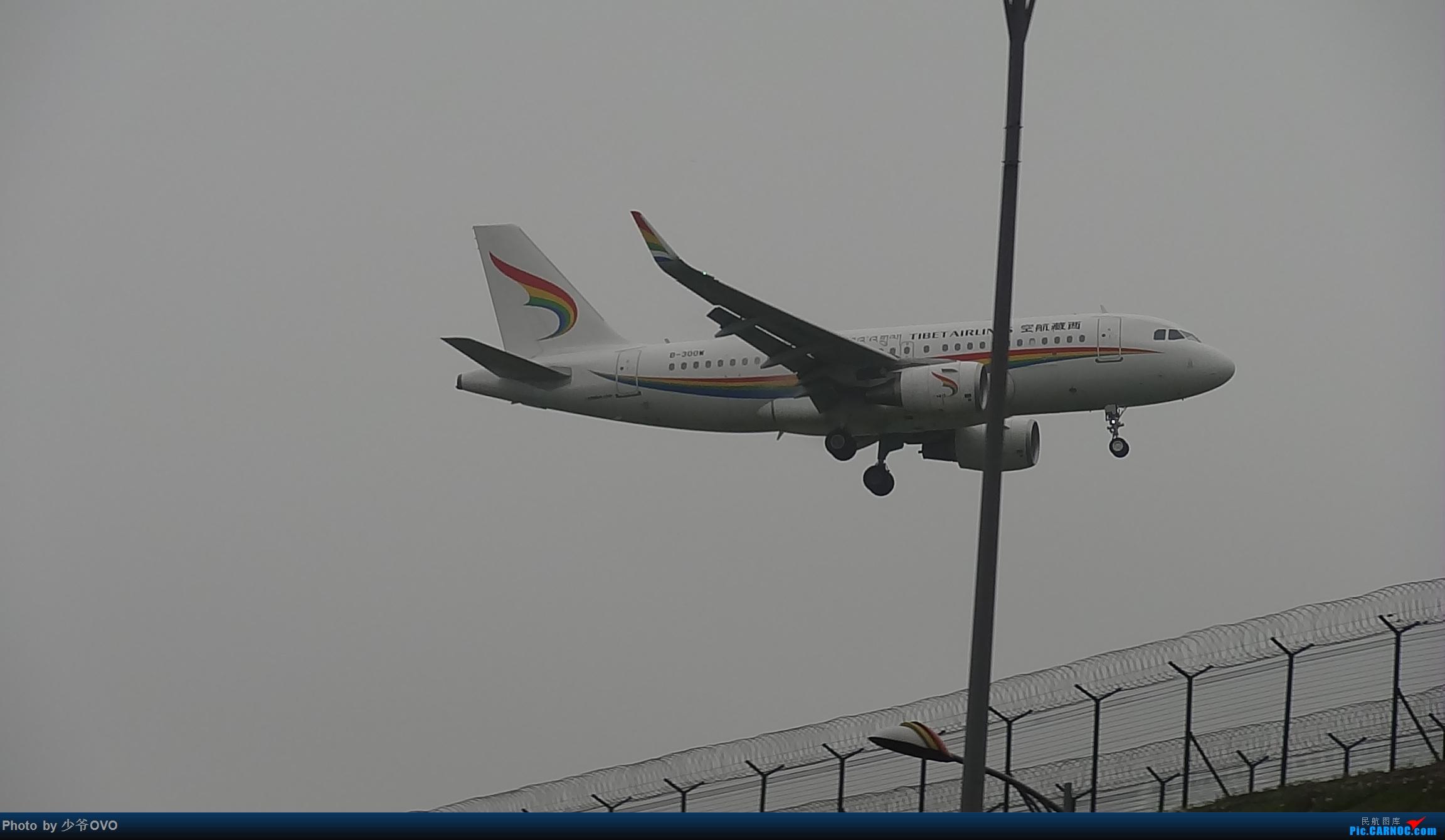 [原创]CKG重庆江北机场拍机 ,渣图一堆,多指点 AIRBUS A319-100 B-300W 中国重庆江北国际机场