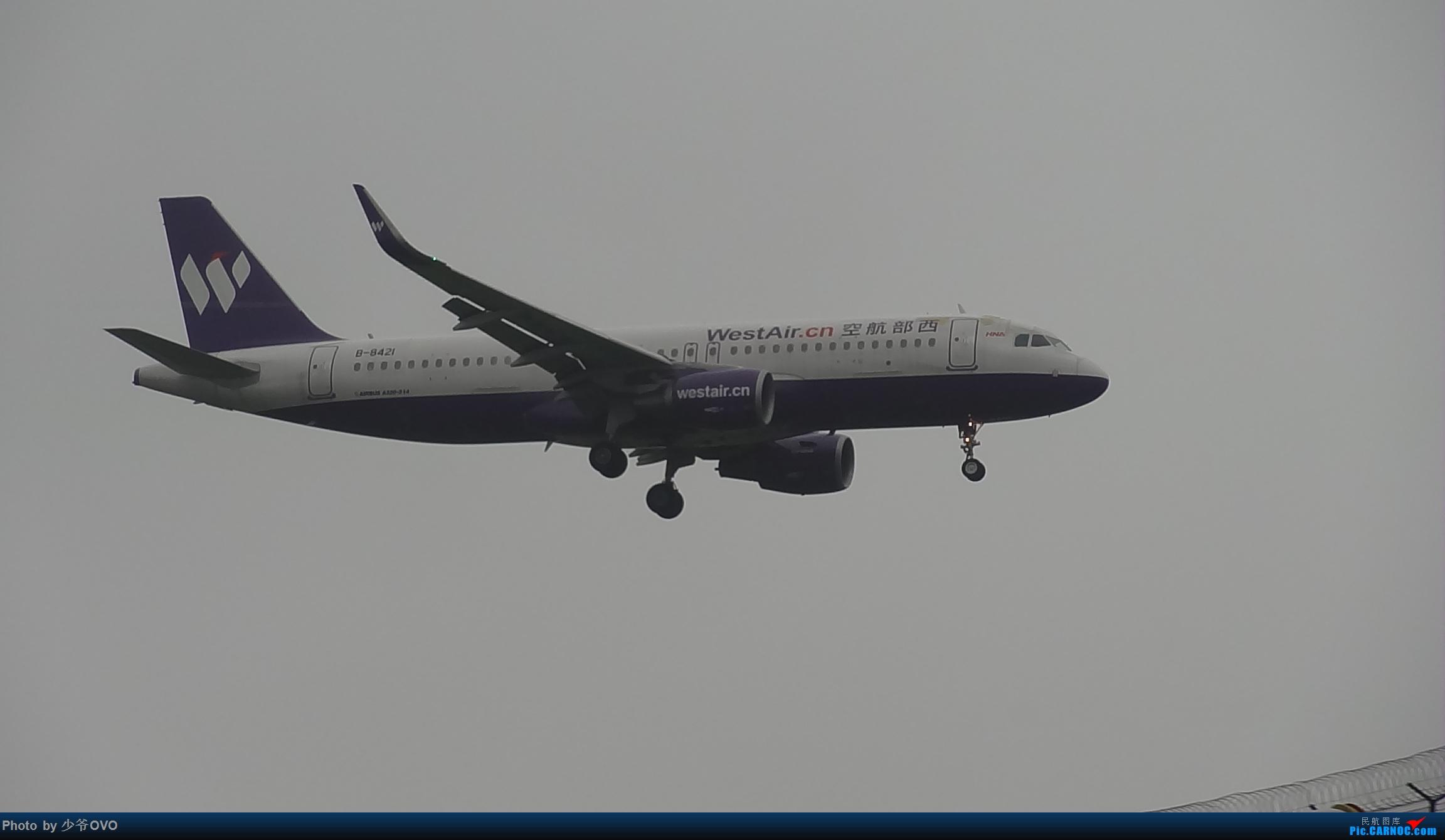Re:[原创]CKG重庆江北机场拍机 ,渣图一堆,多指点 AIRBUS A320-200 B-8421 中国重庆江北国际机场