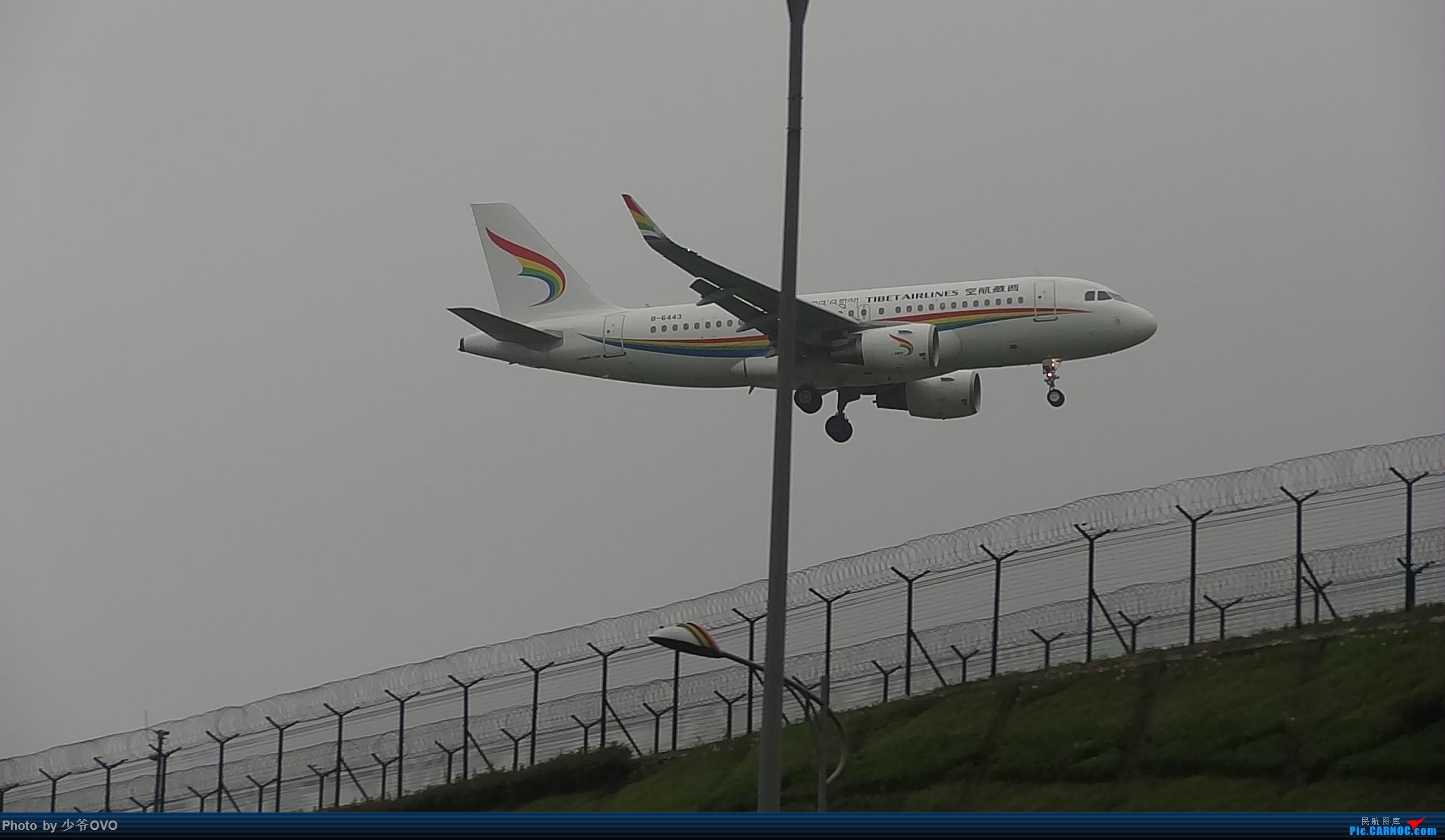 Re:[原创]CKG重庆江北机场拍机 ,渣图一堆,多指点 AIRBUS A319-100 B-6443 中国重庆江北国际机场