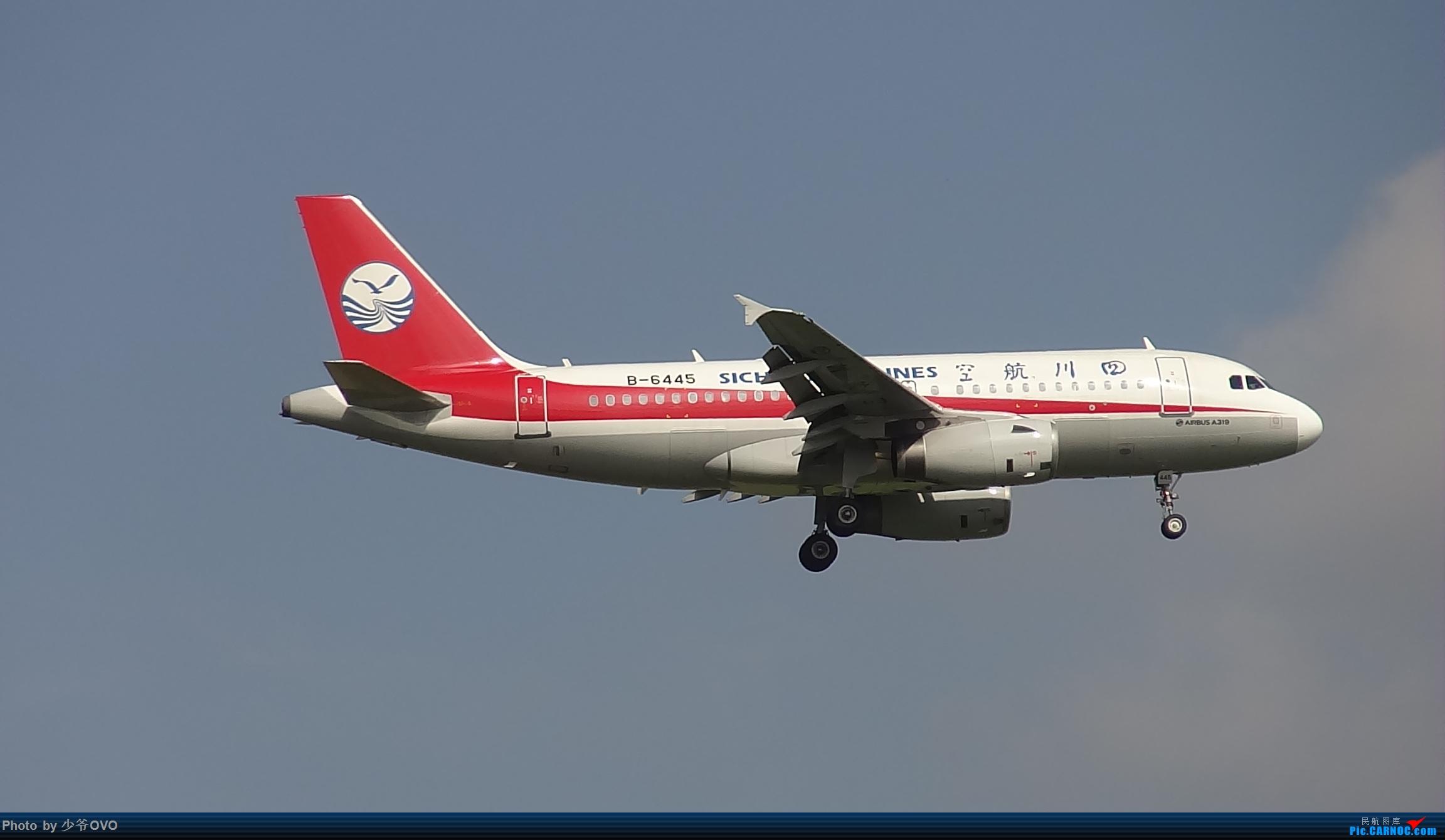 Re:[原创]CKG重庆江北机场拍机 AIRBUS A319-100 B-6445 中国重庆江北国际机场