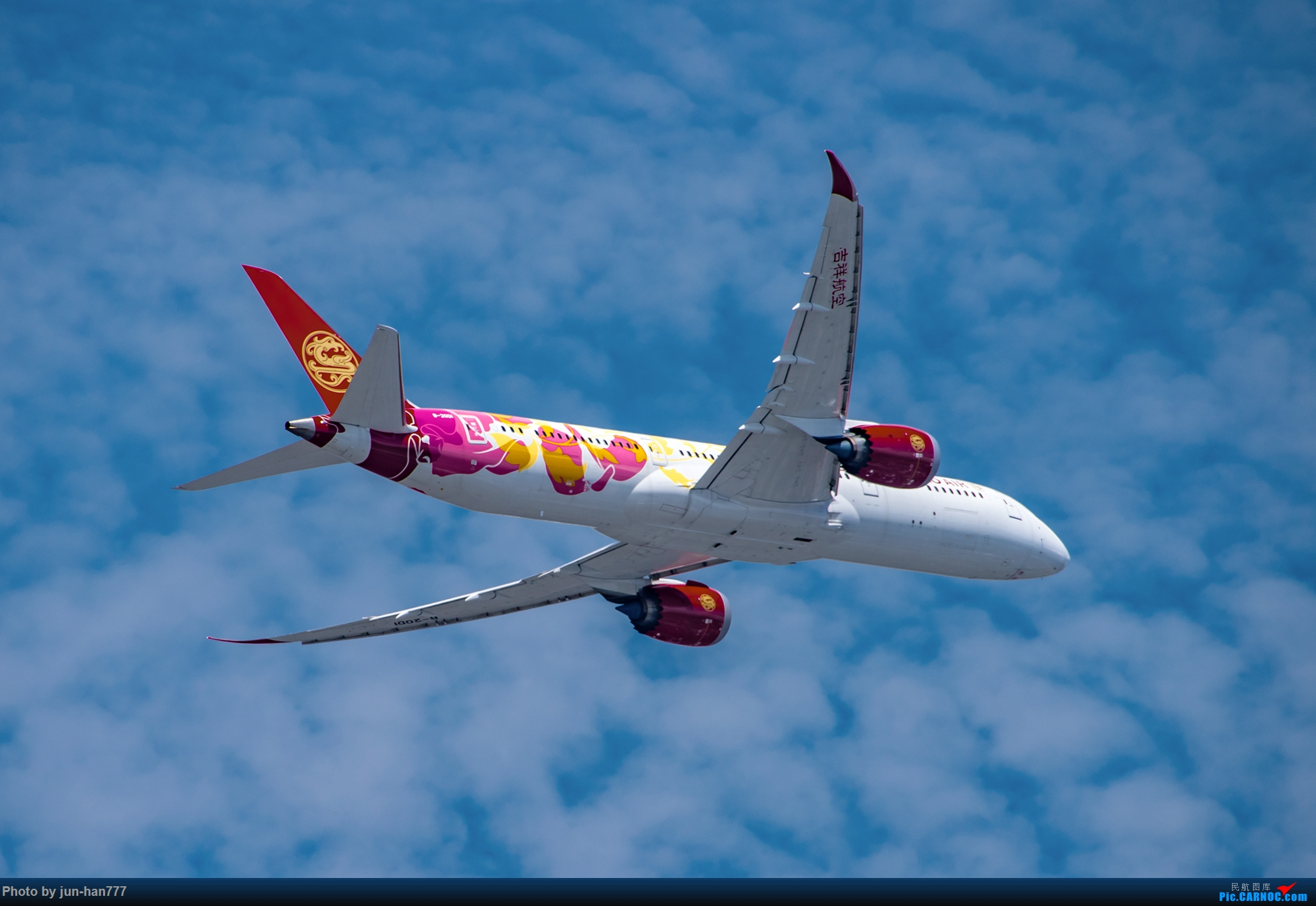 Re:[原创]吉祥姐妹花 BOEING 787-9 B-20D1