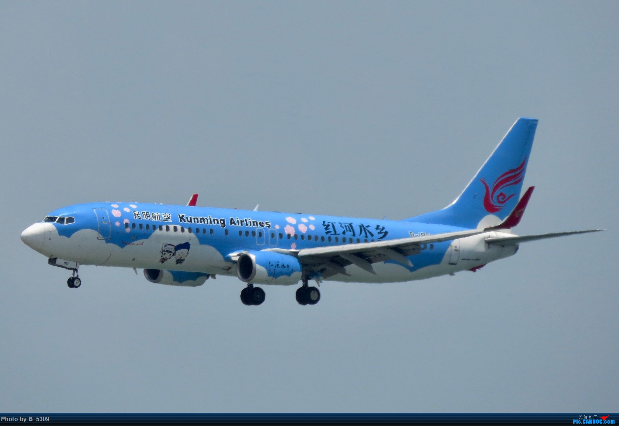 Re:[原创]逮KLM的大中午… BOEING 737-800 B-1991 中国厦门高崎国际机场
