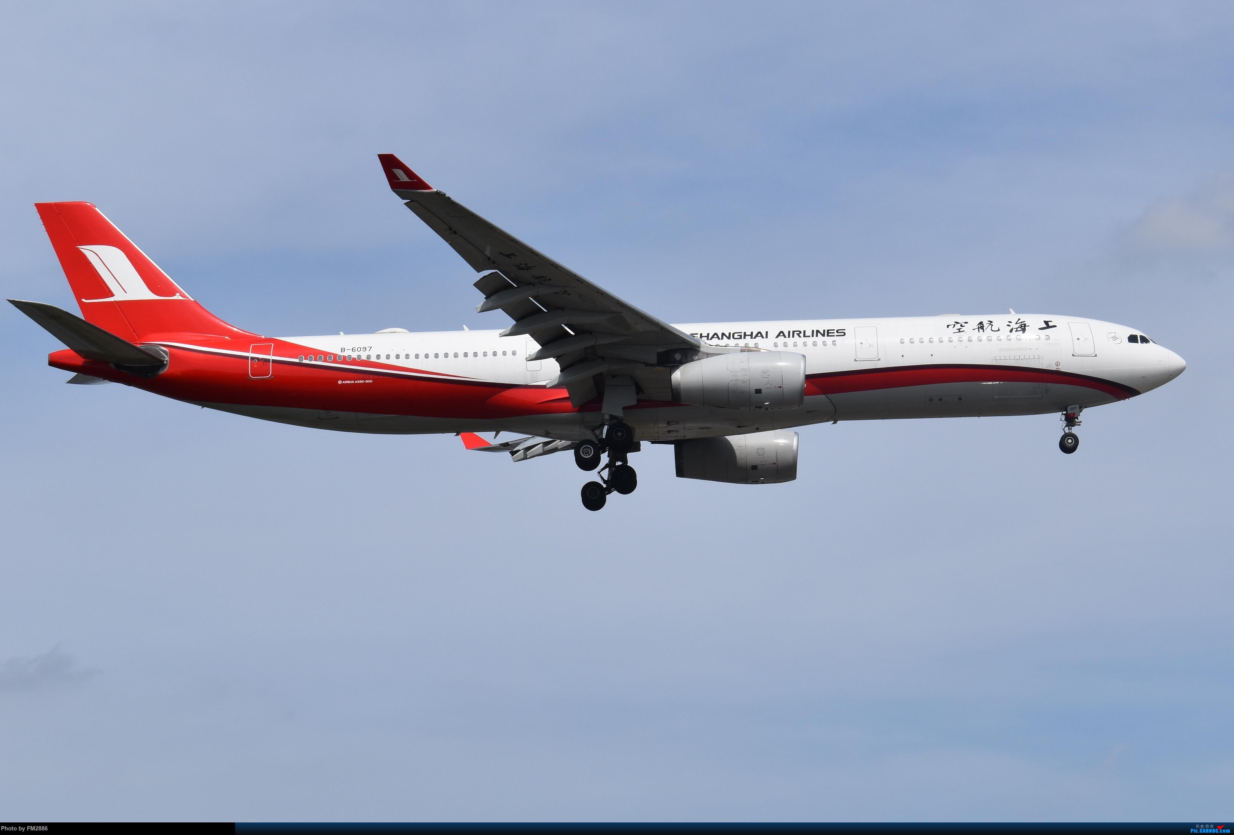 [原创]上海航空330 AIRBUS A330-300 B-6097 上海虹桥国际机场