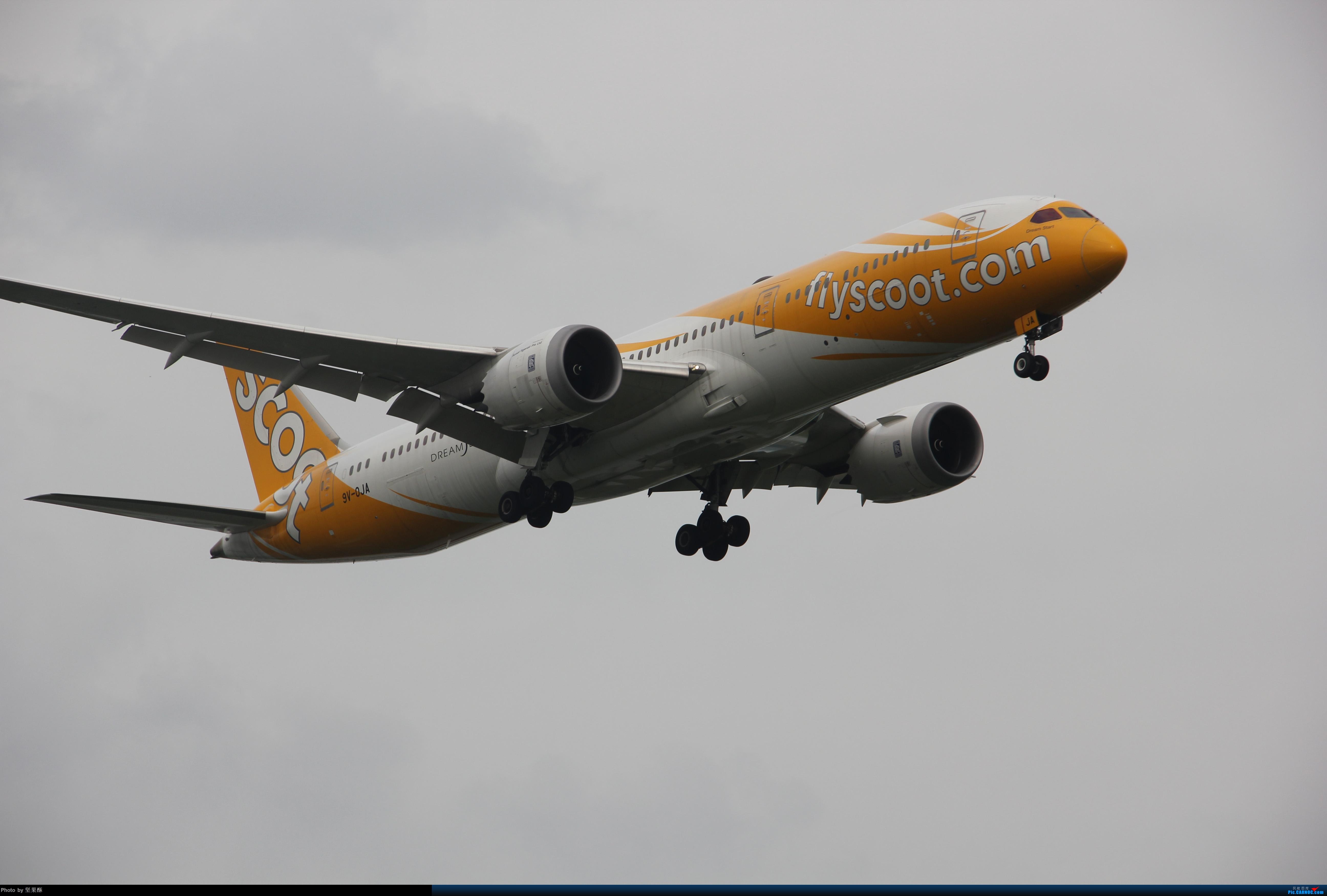 [原创]酷航789落地南京 BOEING 787-9 9V-OJA 南京市禄口国际机场