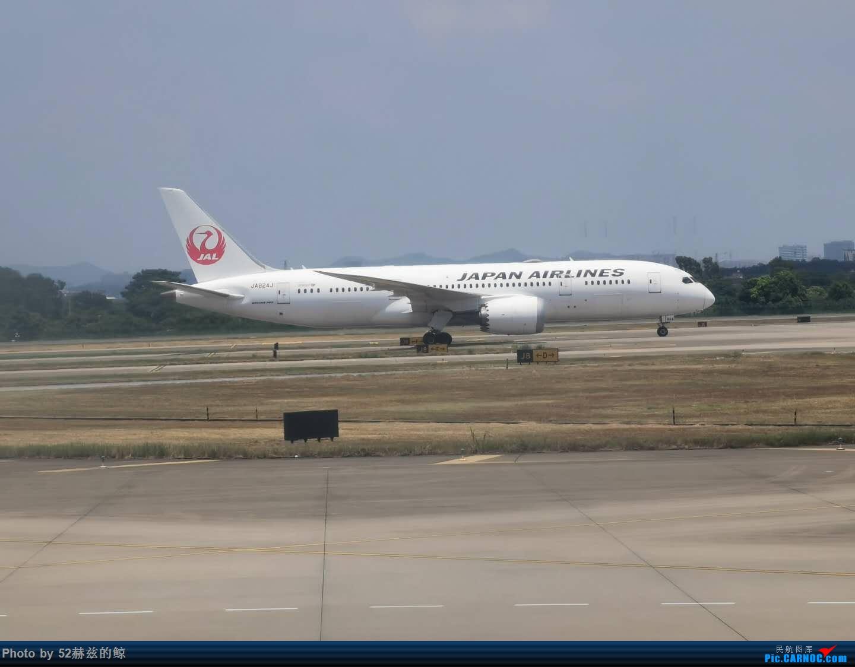 Re:[原创]2020.7&2020.8北京-广州-烟台-北京 BOEING 787-9 JA824J 中国广州白云国际机场