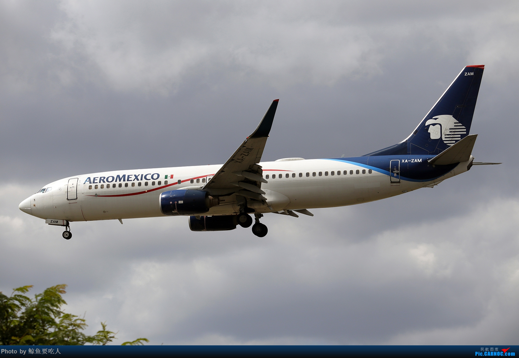 Re:[原创]【多图党】见证疫情后逐步的恢复,加拿大夏日多伦多皮尔逊机场拍机~ 乐见诸航空公司复航多伦多 BOEING 737-800 XA-ZAM 多伦多皮尔逊国际机场