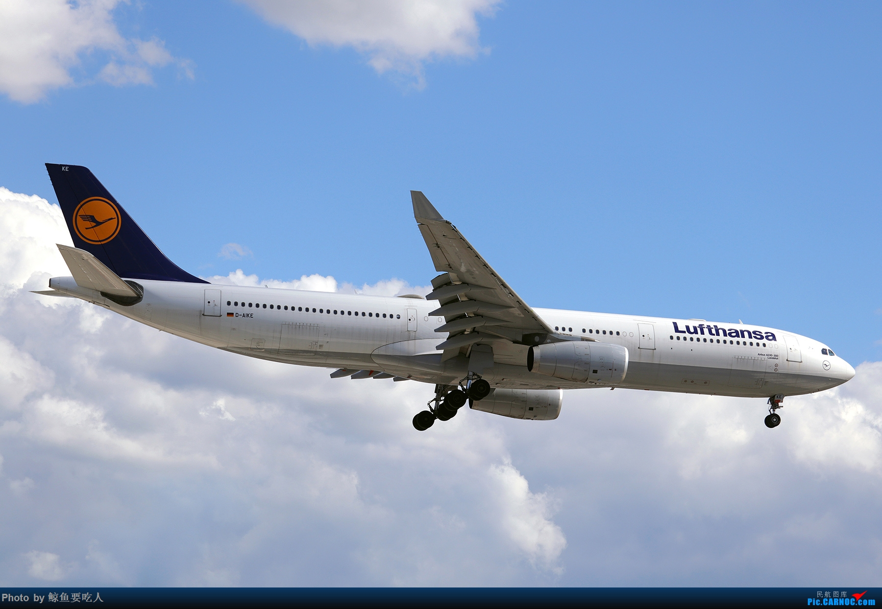 Re:[原创]【多图党】见证疫情后逐步的恢复,加拿大夏日多伦多皮尔逊机场拍机~ 乐见诸航空公司复航多伦多 AIRBUS A330-300 D-AIKE 多伦多皮尔逊国际机场