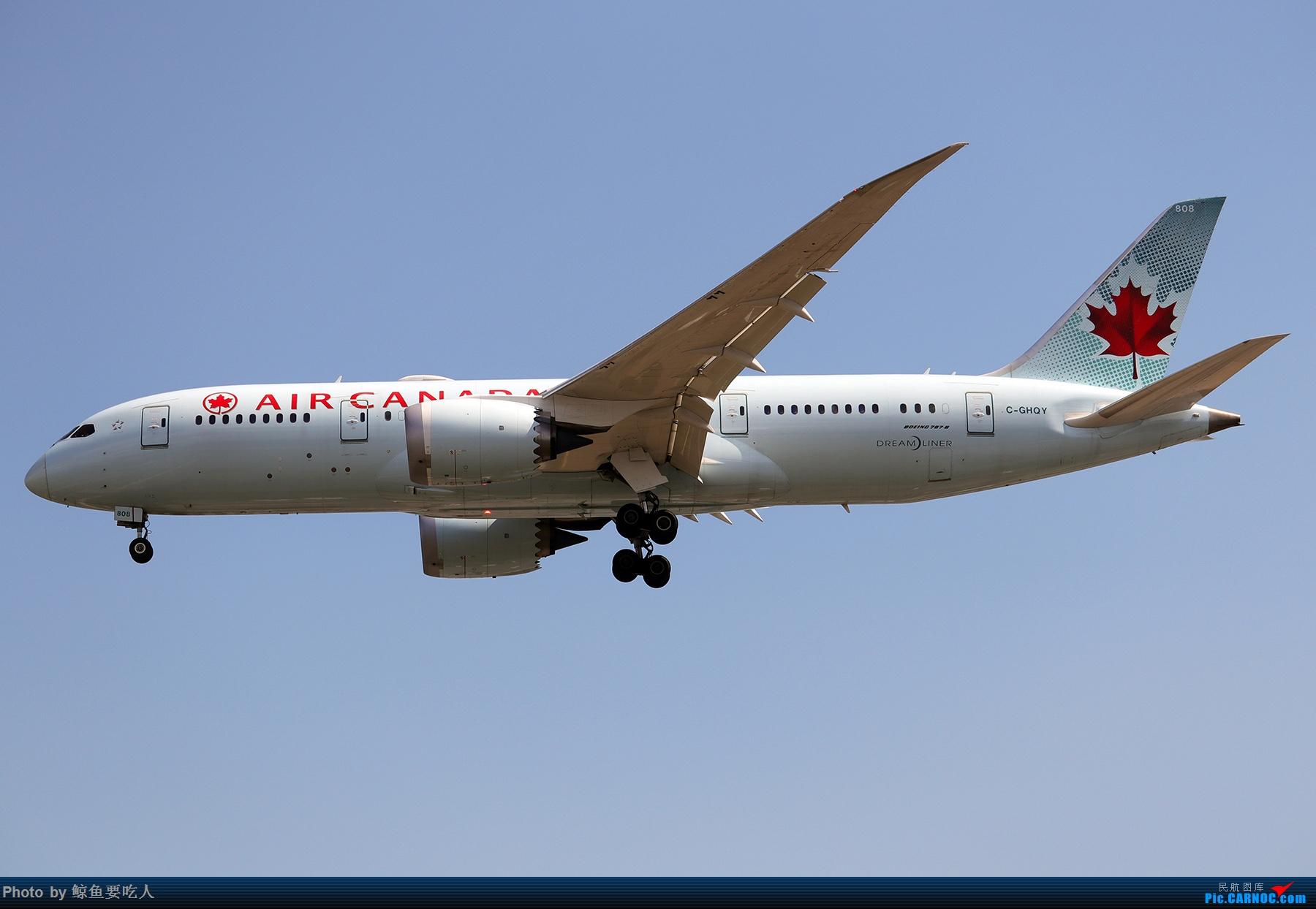 Re:[原创]【多图党】见证疫情后逐步的恢复,加拿大夏日多伦多皮尔逊机场拍机~ 乐见诸航空公司复航多伦多 BOEING 787-8 C-GHQY 多伦多皮尔逊国际机场