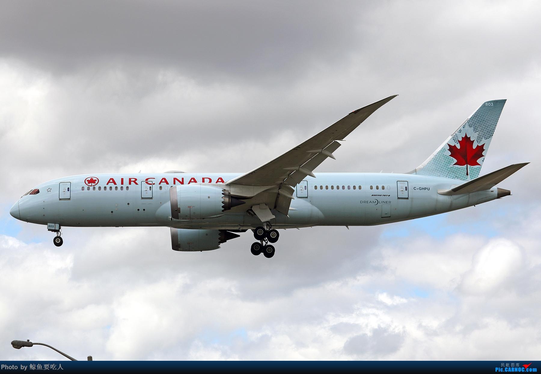 Re:【多图党】见证疫情后逐步的恢复,加拿大夏日多伦多皮尔逊机场拍机~ 乐见诸航空公司复航多伦多 BOEING 787-8 C-GHPU 多伦多皮尔逊国际机场