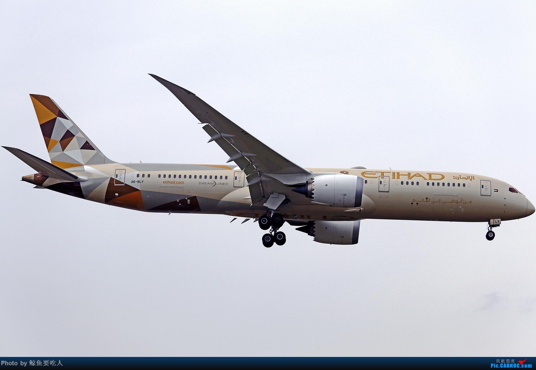 Re:[原创]【多图党】见证疫情后逐步的恢复,加拿大夏日多伦多皮尔逊机场拍机~ 乐见诸航空公司复航多伦多 BOEING 787-9 A6-BLY 多伦多皮尔逊国际机场