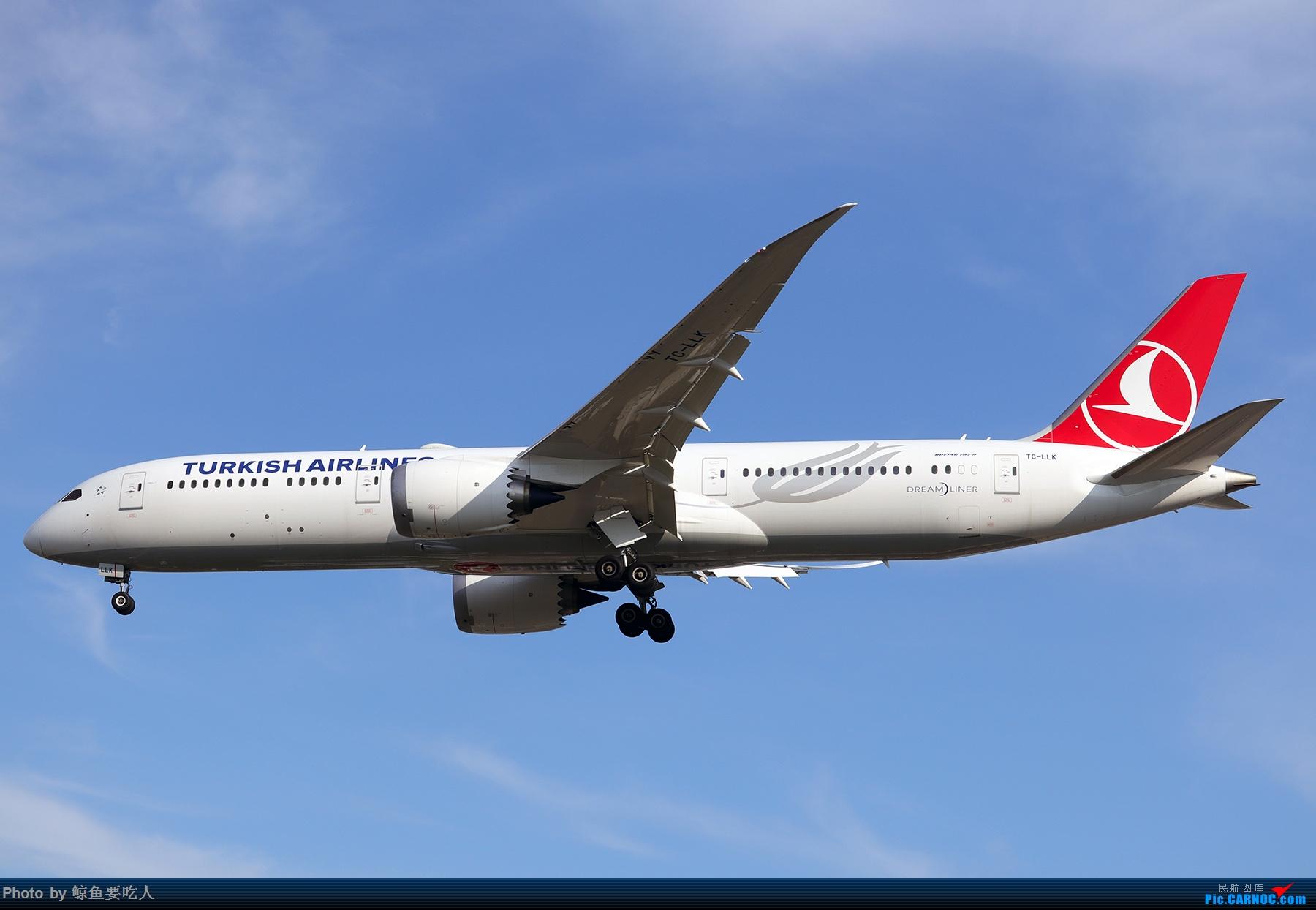 Re:[原创]【多图党】见证疫情后逐步的恢复,加拿大夏日多伦多皮尔逊机场拍机~ 乐见诸航空公司复航多伦多 BOEING 787-9 TC-LLK 多伦多皮尔逊国际机场