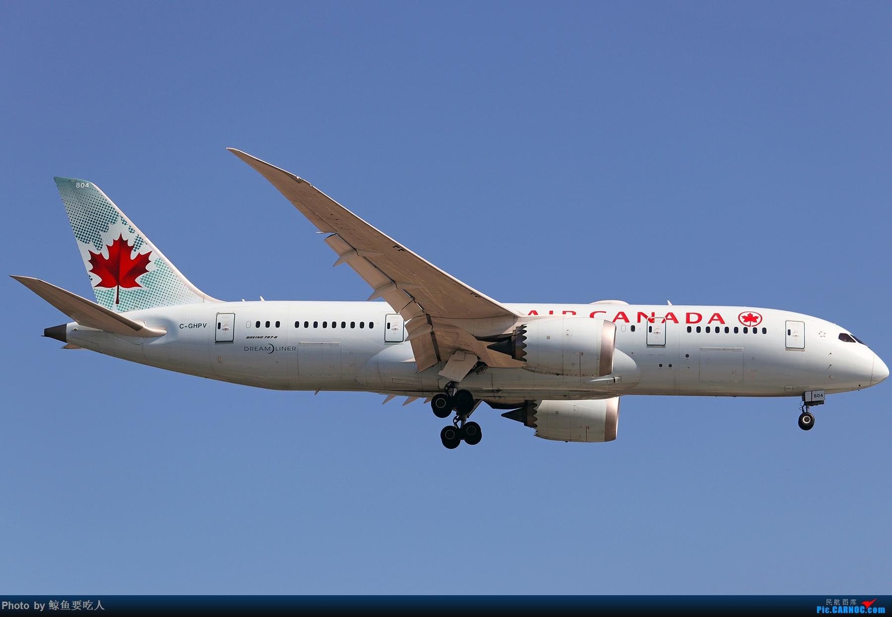 Re:[原创]【多图党】见证疫情后逐步的恢复,加拿大夏日多伦多皮尔逊机场拍机~ 乐见诸航空公司复航多伦多 BOEING 787-8 C-GHPV 多伦多皮尔逊国际机场