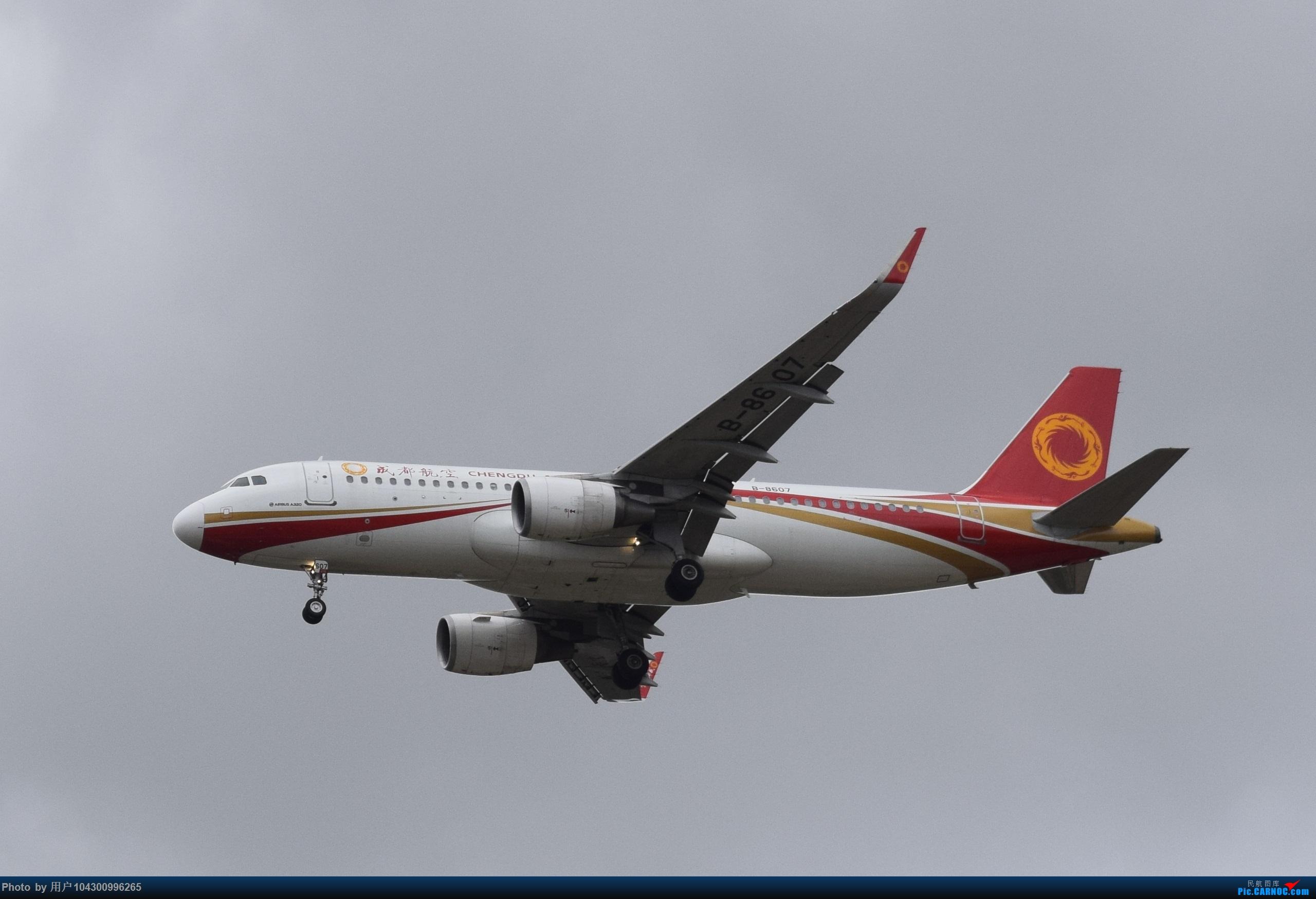 Re:[原创]【DM】2020贵阳龙洞堡首拍 AIRBUS A320-200 B-8607 中国贵阳龙洞堡国际机场