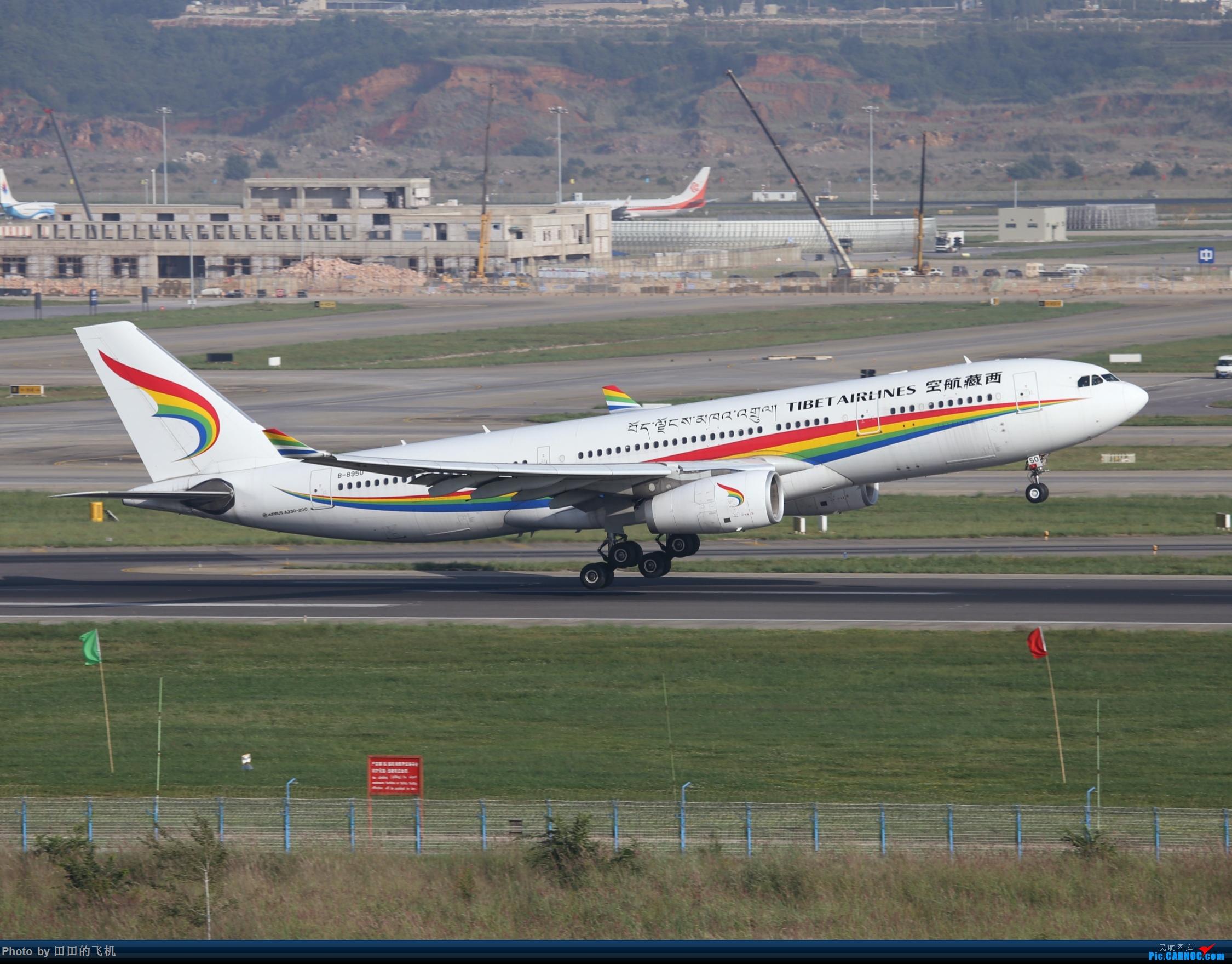 Re:近期长水的各种好货 AIRBUS A330-200 B-8950 中国昆明长水国际机场
