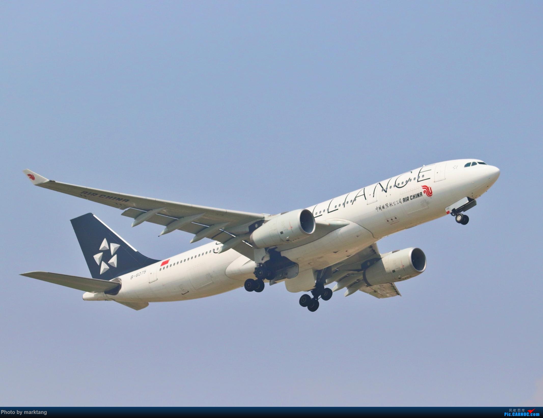 [原创]中国国际航空星空联盟332 AIRBUS A330-200 B-6075 中国深圳宝安国际机场