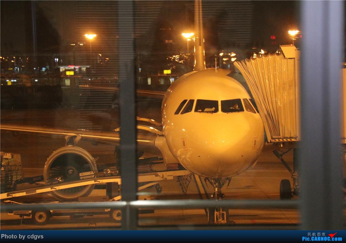 Re:[原创]周末再访冰城没有冰  九元+龙江航空初体验 NKG-HRB-NKG AIRBUS A320-200 B-6338 中国南京禄口国际机场