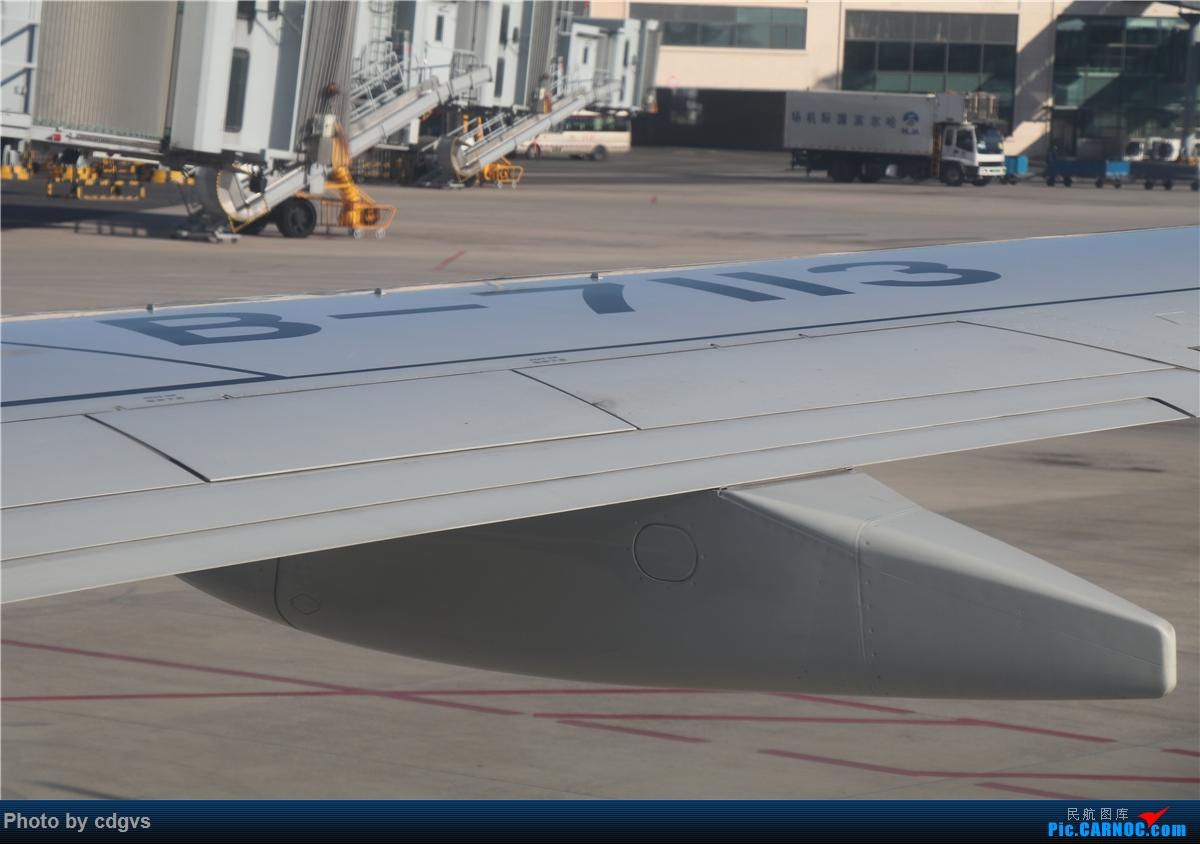 Re:周末再访冰城没有冰  九元+龙江航空初体验 NKG-HRB-NKG BOEING 737-800 B-7113 中国哈尔滨太平国际机场