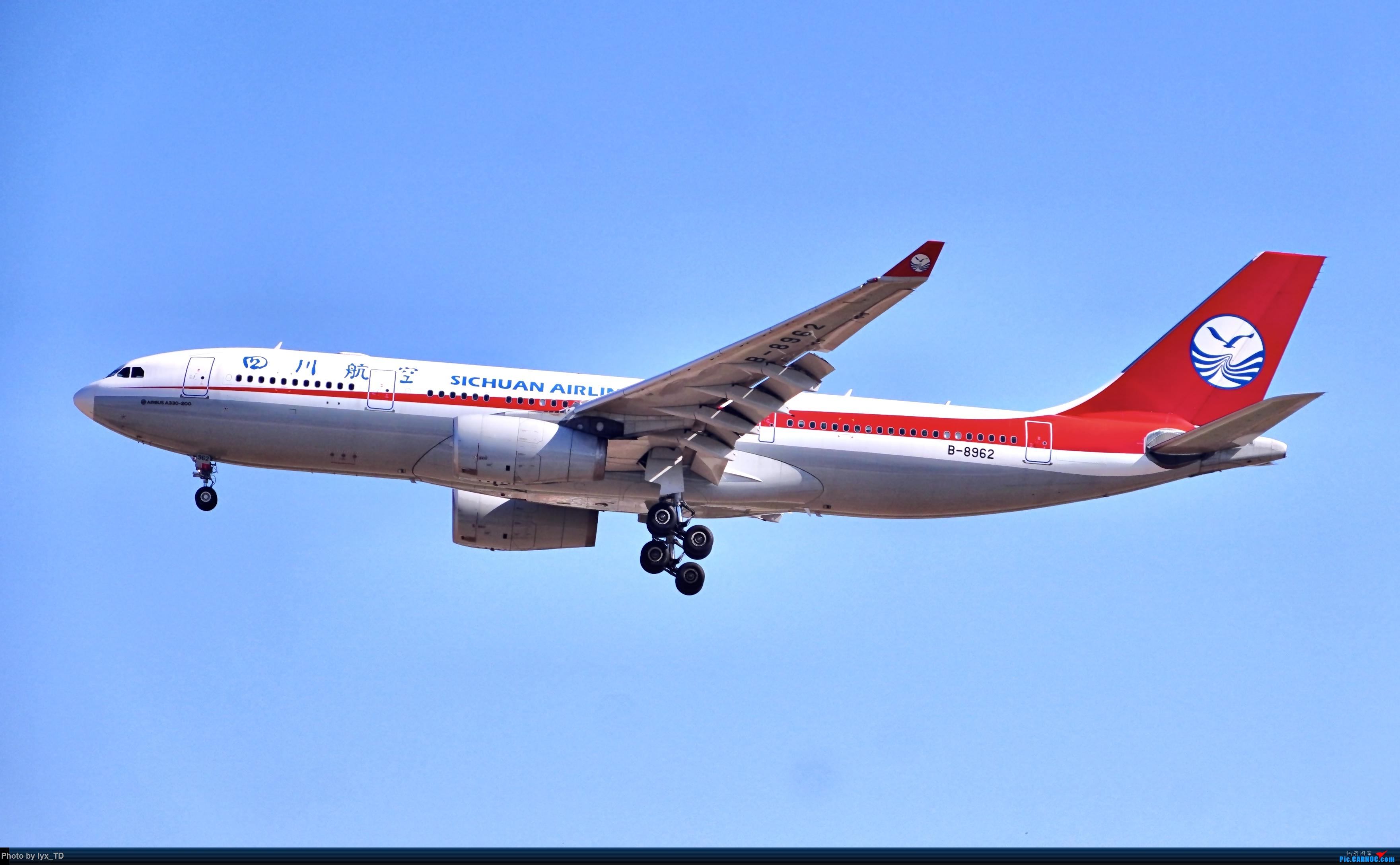 Re:20220.10.24PEK拍机,EVA77W、国航孔雀(1) AIRBUS A330-200 B-8962 PEK