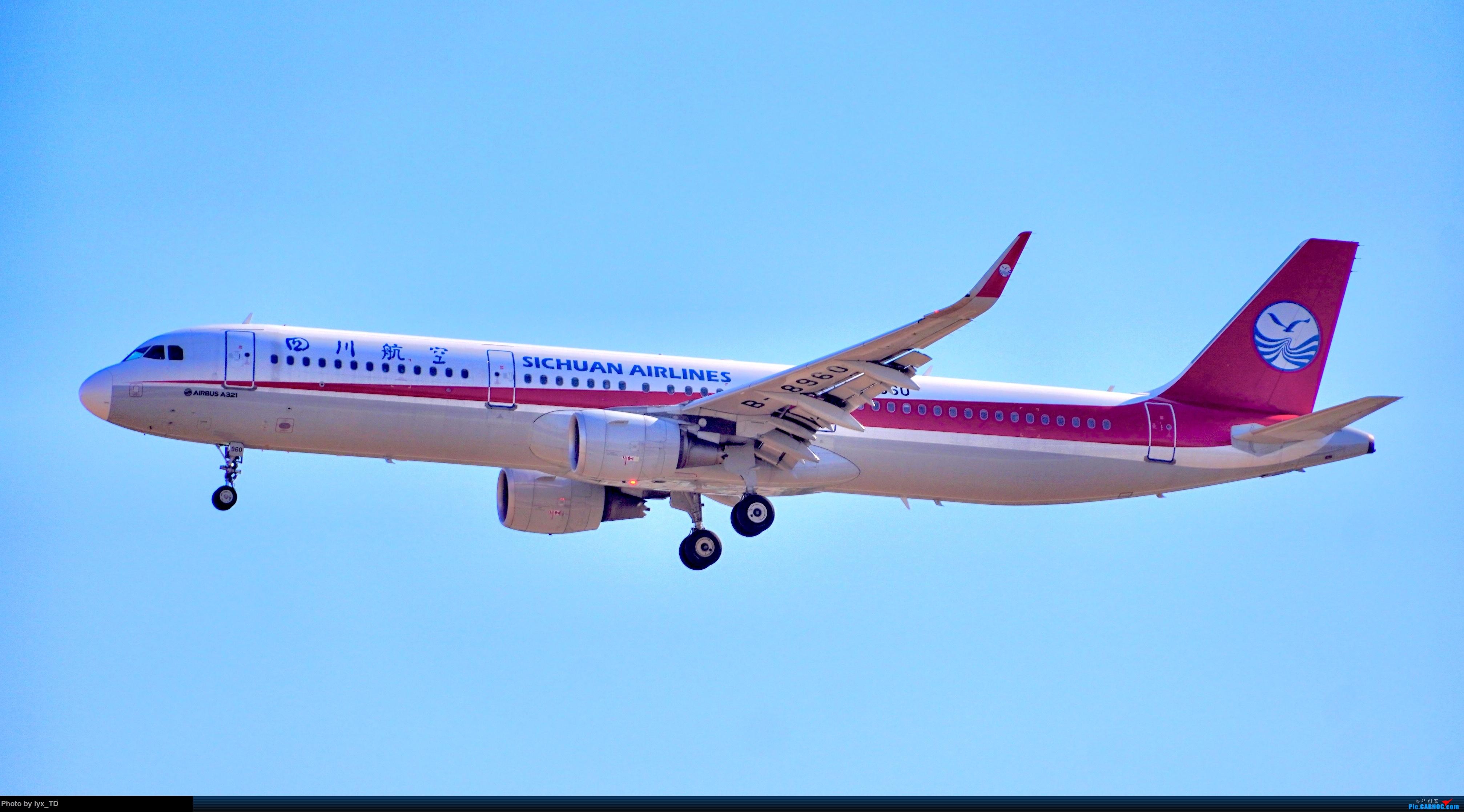 Re:20220.10.24PEK拍机,EVA77W、国航孔雀(1) AIRBUS A321-200 B-8960 中国北京首都国际机场