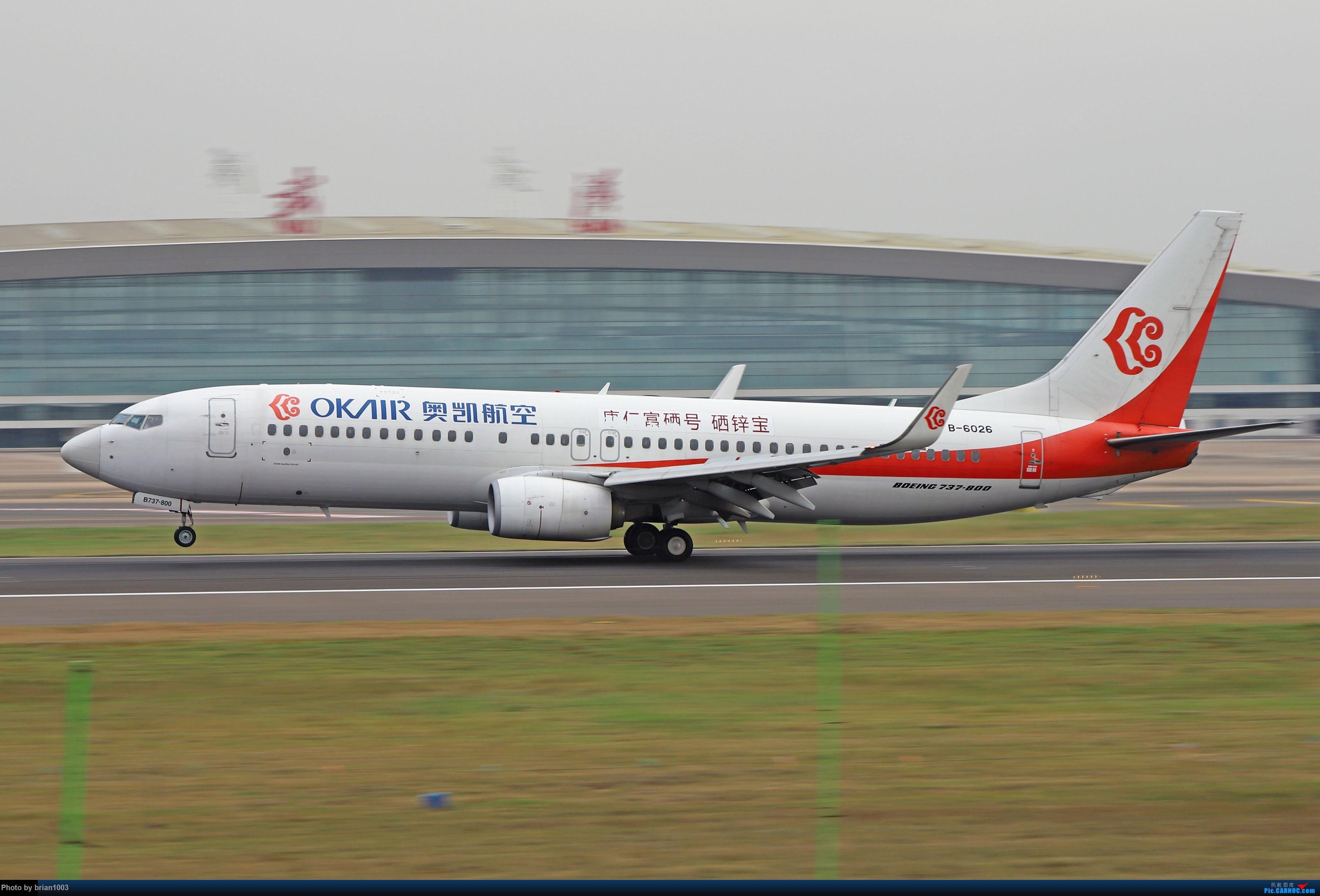 Re:[原创]WUH天河机场拍机之十一月(菲律宾皇家航空A319) BOEING 737-800 B-6026 中国武汉天河国际机场