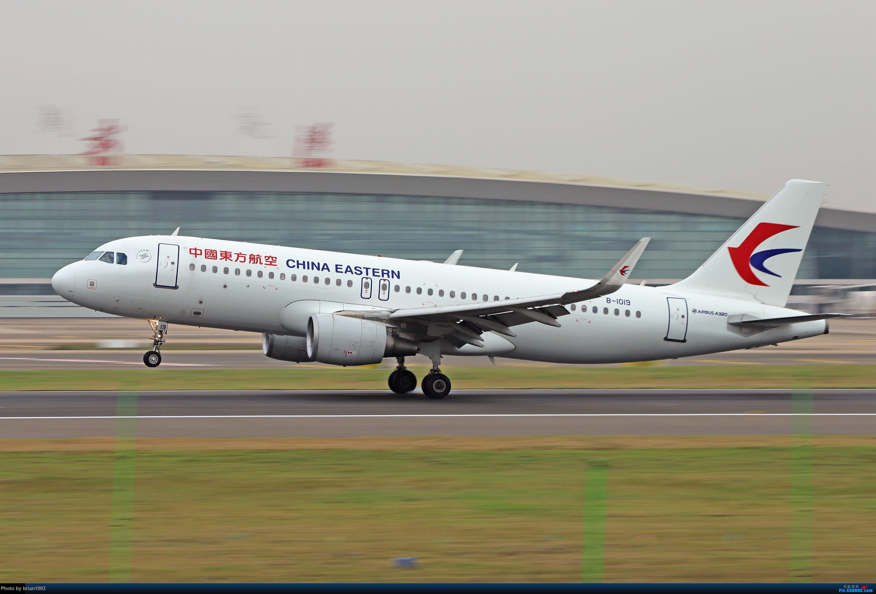 Re:WUH天河机场拍机之十一月(菲律宾皇家航空A319) AIRBUS A320-200 B-1019 中国武汉天河国际机场