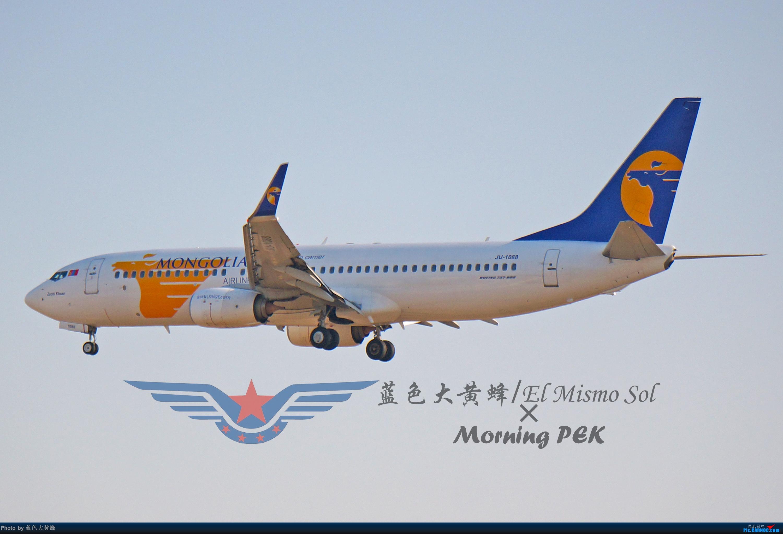 [原创]2020年总结 BOEING 737-800 JU-1088 中国北京首都国际机场