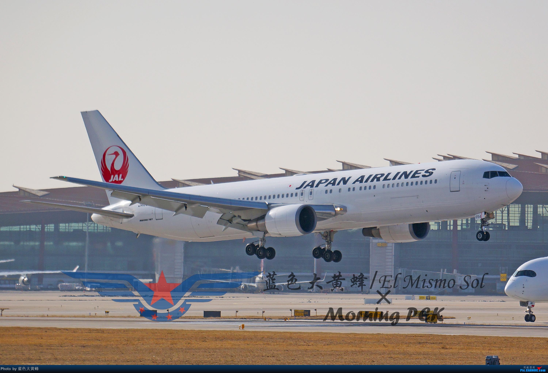 Re:[原创]2020年总结 BOEING 767-300 JA654J 中国北京首都国际机场