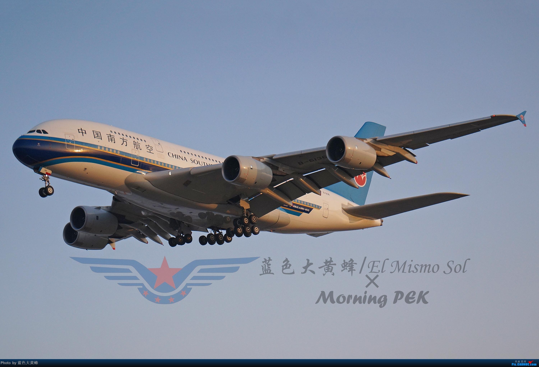 Re:[原创]2020年总结 AIRBUS A380 B-6136 中国北京首都国际机场