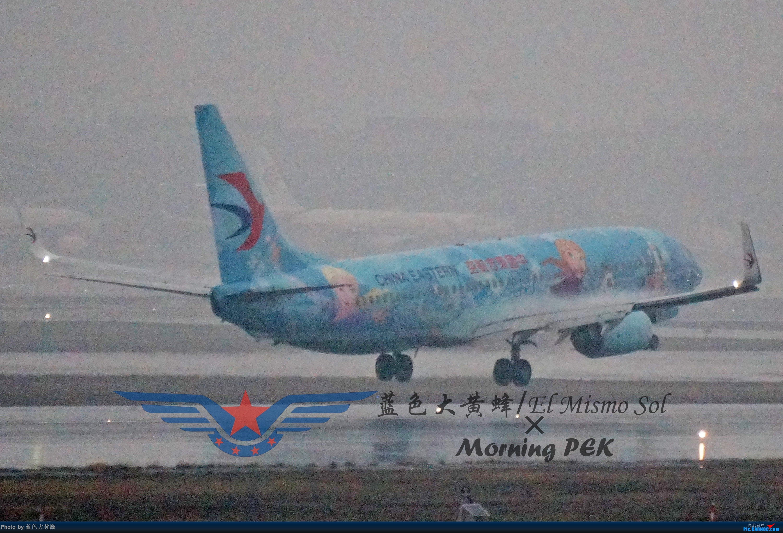 Re:[原创]2020年总结 BOEING 737-800 B-1317 中国上海虹桥国际机场