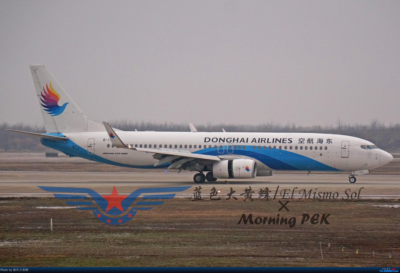 Re:[原创]2020年总结 BOEING 737-800 B-1771 中国南京禄口国际机场