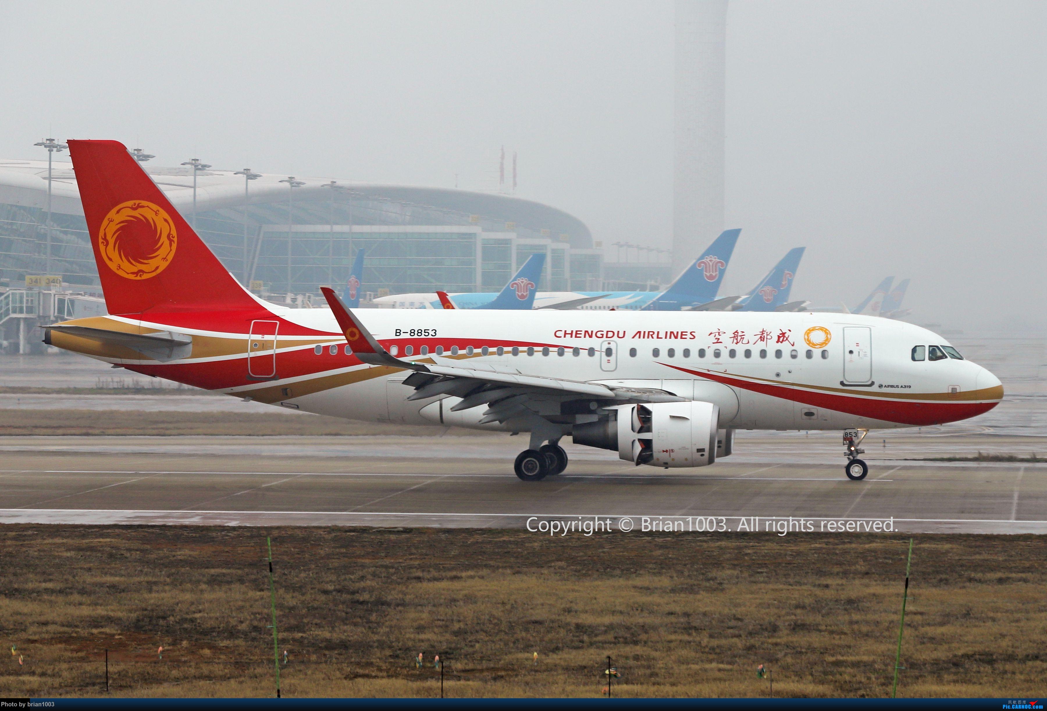 Re:[原创]WUH天河机场2021年拍机之二月 AIRBUS A319-100 B-8853 中国武汉天河国际机场